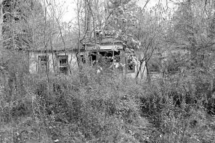 bungalow-341-9706.jpg